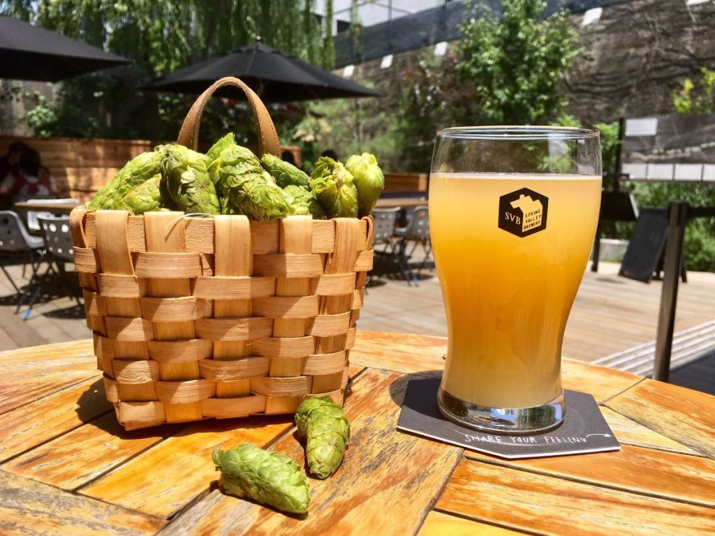 スプリングバレーブルワリーのフレッシュホップビール(画像提供:スプリングバレーブルワリー)